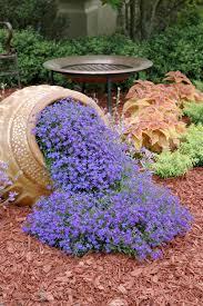 flowers for garden. How To Create Spilled Flower Pot Flowers For Garden