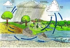 essay rain water harvesting photo essay rain water harvesting images