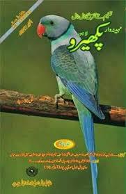 Punjabi Language Punjabi Language Wikipedia