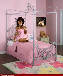 girls bedroom ideas pink. fine bedroom ideas for teenage girls pink 13 inspirational styles