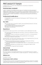 Business Analyst Sample Resumes Resume Business Manager Sample