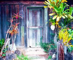 Αποτέλεσμα εικόνας για backyard painting