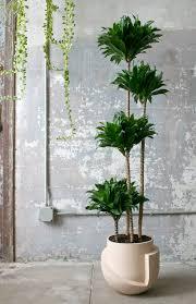 L+L-floor planter