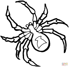 1325x1298 coloring pages luxury coloring pages spider rtaybar8c coloring