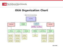 Csu Organizational Chart Campus Audits Chancellors Office Guide To Survival Janice