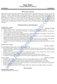 Sample Insurance Assistant Resume Underwriting Resume Examples Examples Of Resumes Bunch Ideas Of 11