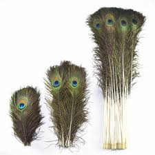 Wholesale 50pcs/lot Natural Peacock Feathers For Crafts 25-80cm ...