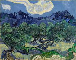 the olive trees painting vincent van gogh the olive trees art print