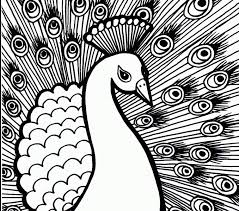 Small Picture Peacock Coloring Pages Best Coloring Pages adresebitkiselcom