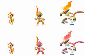 Chimchar Evolution Chart Pokemon Go Chimchar November Community Day Features