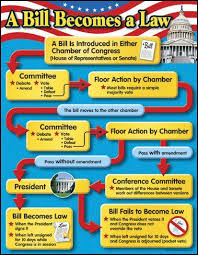 Bill To Law Chart Bill Becomes A Law Chart For The Classroom Teaching