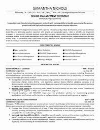 C Level Resume Samples Executive Level Resume Samples Unique C Level Executive Resume 9