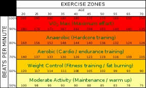 Target Heart Rate Chart Awesome Heart Rate - Template Document