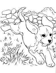 Small Picture Cute Dog Running Coloring Page Animal pages of KidsColoringPage