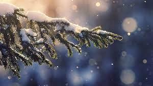 Winter wallpaper ...