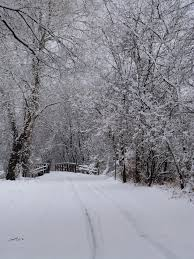 Image result for wauponsee glacial trail in winter