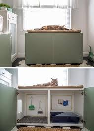 Litter Box Ideas   Cat Litter Solutions   Hidden Cat Litter Box