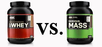 whey protein vs weight gainer