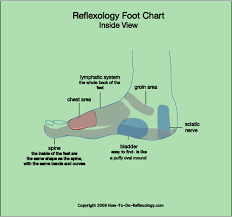 Left Foot Organ Chart Reflexology Foot Map Diagrams Charts Including Step By