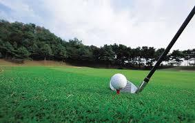 """""""高尔夫""""的图片搜索结果"""