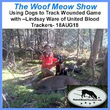 Podcast Using Dogs To Track Wounded Game With Lindsay Ware Of