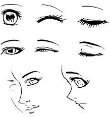 how to draw anime eyes step by step for beginners.  Eyes Draw Anime Eyes Females How To Manga Girl Drawing Tutorials   Step By Intended To By For Beginners T