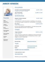 Curriculum Vitae Voorbeelden - Roistudios.co