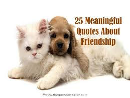 Meaningful Quotes About Friendship Stunning 48 Meaningful Friendship Quotes