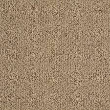 home decorators collection carpet sample braidley in color