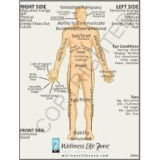 Men Body Chart Man Chart Sada Margarethaydon Com