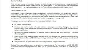 Procurement Resume Senior Consultant End To End E Procurement