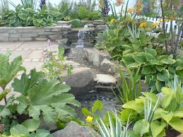 Small Picture Design My Backyard Online Backyard Landscape Design