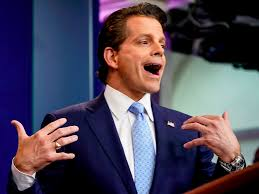 Image result for anthony scaramucci pictures