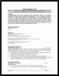 Profile Summary 1 Personal Profiles Example Resume Marvin Is Sample