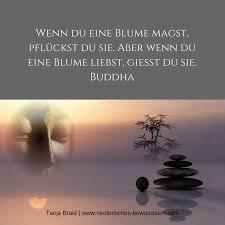 Spruch Zitat Buddha Spirituelle Zitate Sprüche Weisheiten