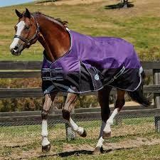 Horse Turnout Blanket Size Chart Weatherbeeta Horse Blankets Golegilo Club