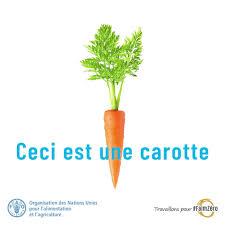 """Résultat de recherche d'images pour """"gif animé de légumes"""""""