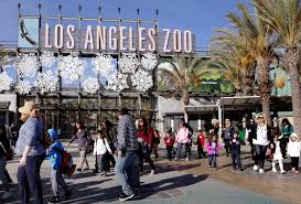 Image result for los angeles falls