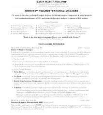Resume Samples For Managers Enchanting Resume Samples For Managers ...