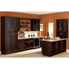 Home Depot Metal Cabinets Hampton Bay Cambria Assembled 18x84x24 In Pantry Kitchen Cabinet