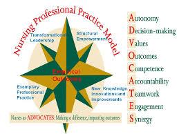 Professionalism In Nursing Nursing Professionalism Hit410 Nursing Wiki