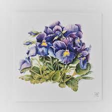 Janette Bird Card (viola) — Montsalvat