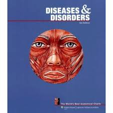 Diseases And Disorders The Worlds Best Anatomical Charts