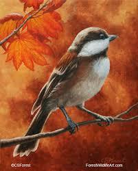 forest wildlife art birds oil paintings gallery