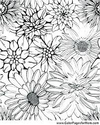 Flower Garden Color Pages Flower Printable Coloring Pages Flower