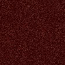 home decorators collection carpet sample slingshot i in color
