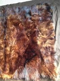 real genuine vintage brown bear skin