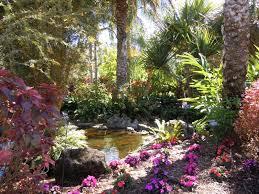 a tropical courtyard pinellas county florida botanical gardens