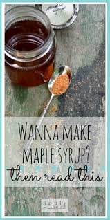 Best 25 Maple Syrup Supplies Ideas On Pinterest  Free Diabetic Backyard Maple Syrup