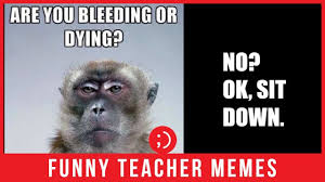67 Funny Teacher Memes That Are Even Funnier If Youre A Teacher